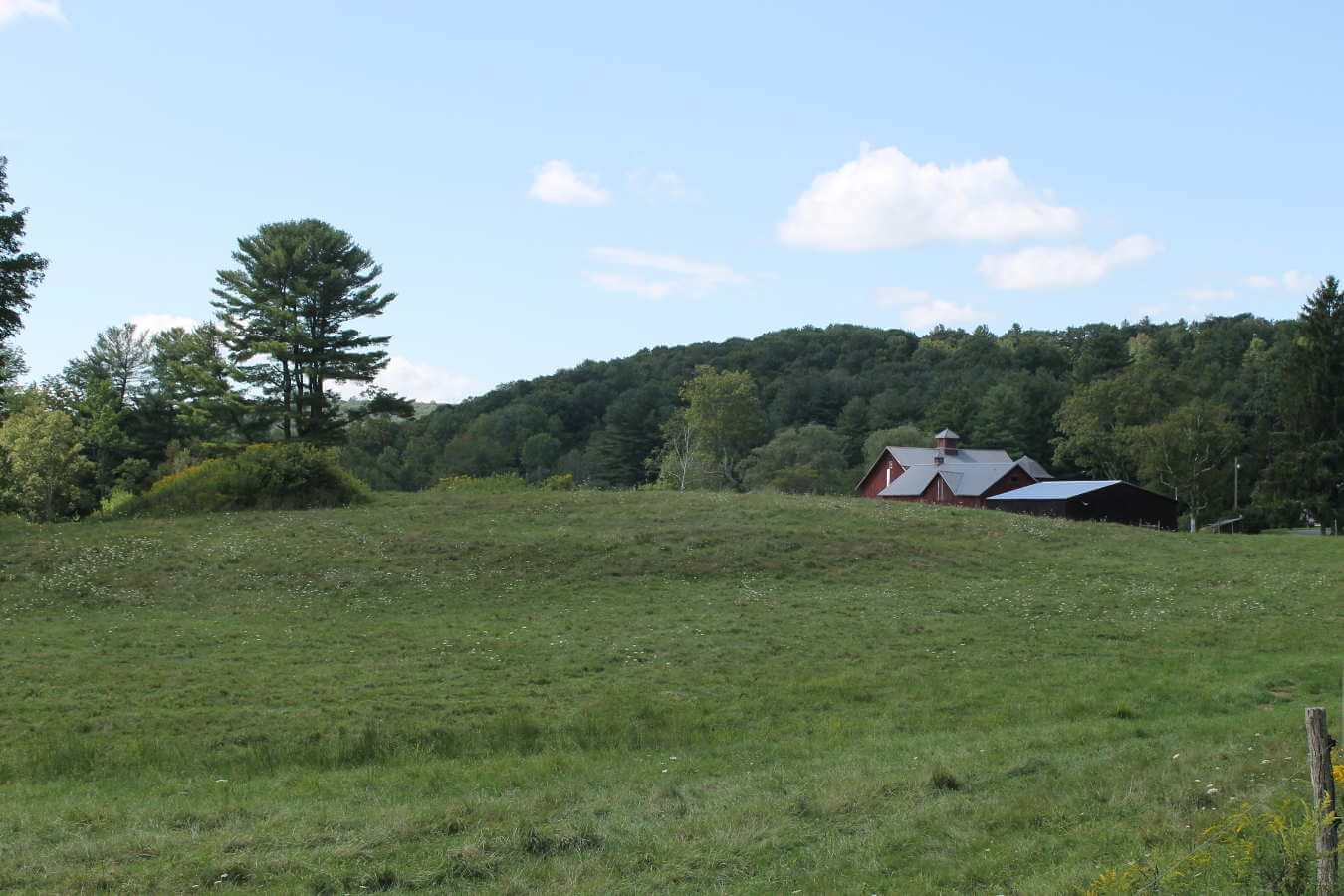 Photo of field and barn at Dunn Farm